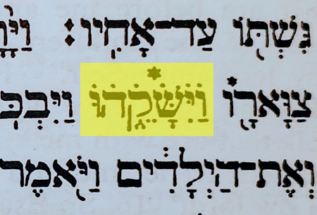 Genesis 33.4 Dotted Letters